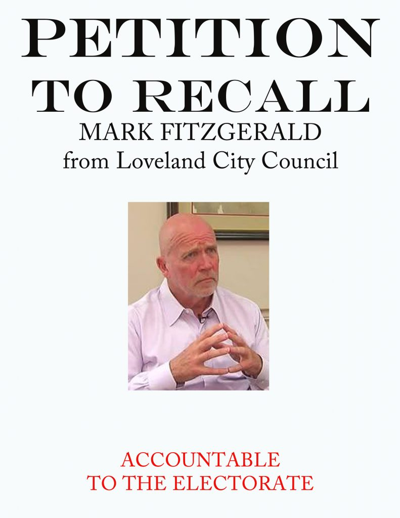 Reasons for Recall Election of Mark Fitzgerald